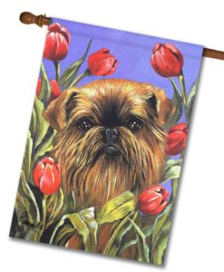 Brussells Griffon Peek-A-Boo - House Flag - 28'' x 40''