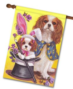 Cavalier King Charles Magic- House Flag - 28'' x 40''