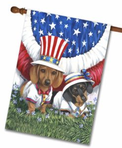 Dachshund USA- House Flag - 28'' x 40''