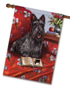 Scottish Terrier Lil Einstein - House Flag - 28'' x 40''