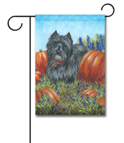 Cairn Terrier Precious Pumpkin Casear - Garden Flag - 12.5'' x 18''