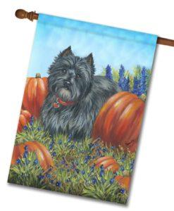 Cairn Terrier Precious Pumpkin Casear - House Flag - 28'' x 40''