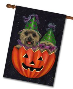 Cairn Terrier Peek-a-boo - House Flag - 28'' x 40''