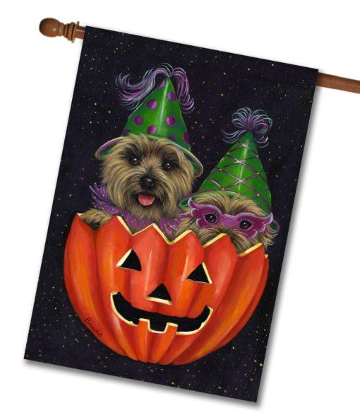 Cairn Terrier Peek-a-boo - House Flag - 28'' x 40''