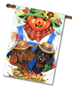 Dachshund Fall Scarecrow - House Flag - 28'' x 40''