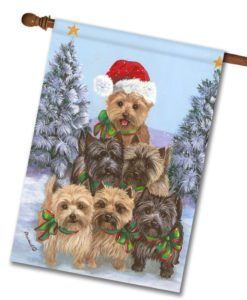 Cairn Terrier Family Tree - House Flag - 28'' x 40''