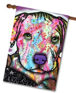 Baby Pit - House Flag - 28'' x 40''