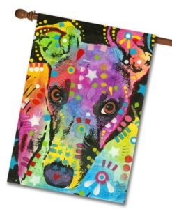 Curious Greyhound - House Flag - 28'' x 40''