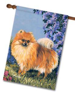 Pomeranian Flower Power - House Flag - 28'' x 40''